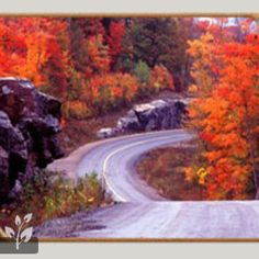 would love to road trip along this road  #CDNGetaway!