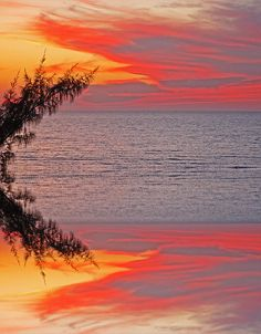 Sunset Seranade Photograph Photography by Aimee L Maher http://aimee-maher.artistwebsites.com/featured/sunset-seranade-aimee-l-maher.html