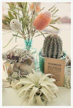 funky protea, air plants and cactus-fun for rehearsal Cactus Centerpiece, Succulent Arrangements, Floral Arrangements, Cactus Decor, Centerpiece Ideas, Floral Centrepieces, Indoor Succulents, Centerpieces, Colorful Succulents