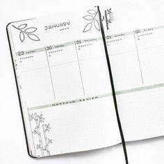 Bullet journal weekly layout, plant drawings, bamboo drawings, leaf drawings, highlighted daily headers, monthly review, monthly tasks. | @thestudiesphase