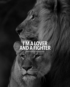 I'm a lover and a fighter.