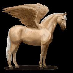 PBSH Pegasus