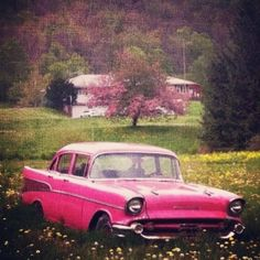 I want to find a classic car like this for a photo session. Preferably in red.