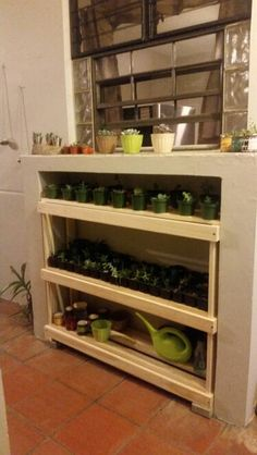 Yes to keep my succulents  organized.