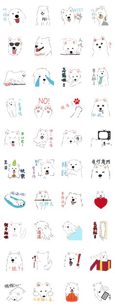 Ideas tattoo dog line drawings for 2019 Dog Face Drawing, Line Drawing, Dog Tattoos, Cat Tattoo, Tatoos, Samoyed Dogs, Pet Dogs, Doggies, Tattoo Designs