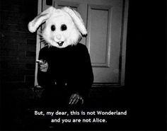 Por favor... esto no es Wonderland