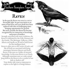 crow, raven, meaning, symbolizes, - Pinned by The Mystic's Emporium on Etsy Raven And Wolf, Quoth The Raven, Symbole Viking, Animal Spirit Guides, Raven Spirit Animal, Raven Art, Raven Totem, Crows Ravens, Baba Yaga