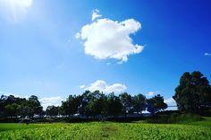 おはようございます  今日の大阪は曇り 今朝も #晴天 写真です  ブルーのグラデーションがきれいに写るこんな天気になって欲しいです  では今日もよろしくです 今日は帰ってから旅行の写真を整理するぞー 写真を見てよかったらいいねやコメントをもらえると嬉しいです . . #写真好きな人と繋がりたい #写真撮ってる人と繋がりたい #カメラ好きな人と繋がりたい #ファインダー越しの私の世界 #フォロー #写真部 . #IGersJP #followme #like4like #instafollow #tagforlikes #followback #follow4follow #webstagram #likeforlike #japan #instagood . コンテストタグ . #WeekendHashtagProject . #PhotoOfTheDay . #JapanHashtagProject . #instaderby . #フォトコンテストOsaka2015 . #WHPhideandseek .