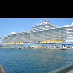 Cruise :)