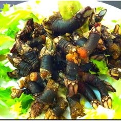 Try percebes (barnacles) in Spain.