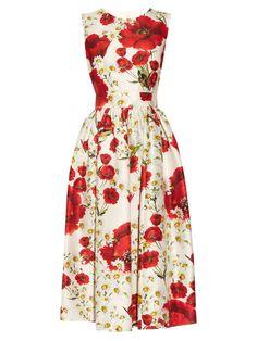 Poppy-print cotton and silk-blend dress | Dolce & Gabbana | MATCHESFASHION.COM UK
