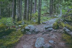 A day trip to Lindeman and Chilliwack Lake