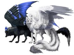 She looks over her pack of wolf. Everything was well in her pack except ,for the rival pack. The Twilight pack always interfered with Dawns. Her white wings spread open a little while she sniffed the  cold air. The Alpha of the rival clan was coming. She could sense it. ( Can someone be the Alpha male of the Twilight pack ? )