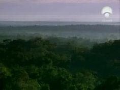 Los dioses perdidos: Mayas 4 de 6