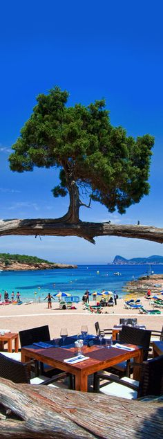 Cala Bassa Beach Club, Ibiza, Spain. More Ibiza?  Visit Ibiza Bars & Restaurants  #ibizarestaurants #ibizaplayas #CalaBassa