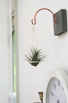 Suspended Air Plant Holder // Hanging Plant Disc // Unique handmade home decor // Living art on Etsy, $22.00