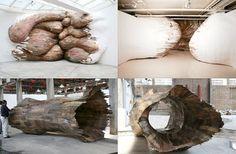 Henrique Oliveira: Organic Eco-Friendly Art