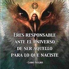 Spiritual Messages, Spiritual Life, Spiritual Growth, Spanish Inspirational Quotes, Spanish Quotes, Soul Quotes, Life Quotes, Wicca, Kabbalah Quotes