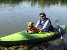 """""""How To Take Your Dog Kayaking & Canoeing"""" from borntopaddle.com. Going to take kayaking lessons this spring, and I'd love to eventually bring my pug Ezekiel with me!"""