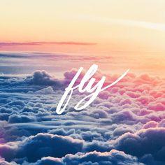 Instagram: 'fly' by @priska