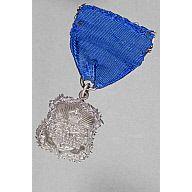 Preview Probationer-s-Prize-Medal--Royal-Hospital-for-Sick-Children-Edinburgh