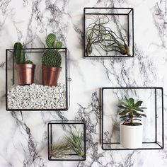 Unique handmade glass homeware, terrariums and planters from Monti. Independent online retailer selling geometric shapes for the home.