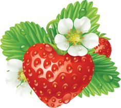 Stock Photos, Pictures and Royalty-Free Images Strawberry Png, Strawberry Clipart, Strawberry Pictures, Strawberry Tattoo, Strawberry Hearts, Free Clipart Images, Royalty Free Clipart, Royalty Free Images, Vector Free