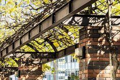 #銀座#ginza #影#太陽光#陽射し#日差し#晴れ#昼 #風景#景色#picture#landscape #東京#日本#tokyo#japan#love#loves_nippon #写真好きな人と繋がりたい