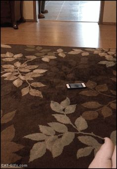 """When your cat steals your new smartphone. """"Thank you, that one is mine right…"""