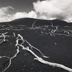 Devastation Hill by Fay Godwin - British Library Prints