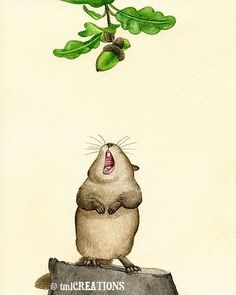 Yummy Acorn - 8x10 archival watercolor print by Tracy Lizotte $20.00