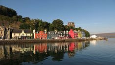Island, Tobermory Mull Scotland Island Harbour Ref Beautiful Places In The World, Wonderful Places, Best Places To Travel, Cool Places To Visit, Dog Friendly Holidays, Village Photos, Scottish Islands, Tromso, Paradise Island