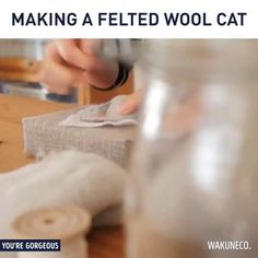 How to make a voodoo for your cat