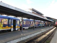 CRÓNICA FERROVIARIA: Uruguay: Suspensión servicio de pasajeros por medi...