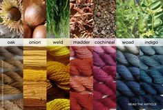Natural Dyes - article: Going Green (and Blue, and Yellow, and Purple): The Secret Life of Natural Dyes
