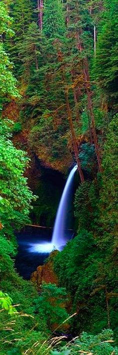 Metlako Falls on Eagle Creek in the Columbia River Gorge east of Portland, Oregon