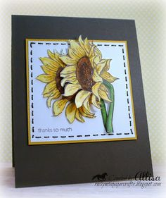 Rocky Mountain Paper Crafts: Sunflower Thanks