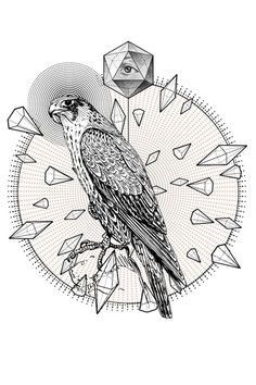 Collection of Geometric Line Drawings by Eric Schmidt,Toronto, Ontario, Canada | Art Direction | Illustration | Geometric | Shapes | Hawk | Eagle |