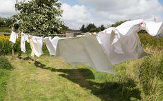Le lavage du linge représente 12 % de la consommation d'eau des Français et constitue une des sources de pollution des eaux douces. Or, alors que les fabricants de lessives se sont évertués à...