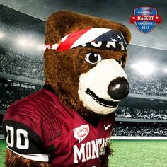 The University of Montana's mascot Monte is in the running for the Champion of the Capital One Mascot Challenge 2013!! Do not forget to place your vote to help Monte get the win!!!