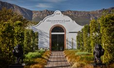 Franschhoek, South Africa Just-opened Leeu Estates is set among sauvignon blanc vineyards. The Sydney Morning Herald, Sauvignon Blanc, Cape Town, Wine Tasting, Where To Go, Adventure Travel, South Africa, Travel Destinations, Beautiful Places