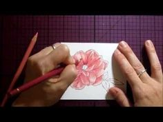 Colored pencil shading tutorial by Dina Kowal on Splitcoast