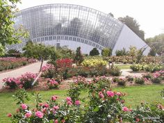 Adelaide Botanic Gardens - Bicentennial conservatory and Rose garden* Adelaide South Australia, Sydney Australia, Australia Travel, Wonderful Places, Great Places, Places To See, Beautiful Places, Melbourne, Kangaroo Island