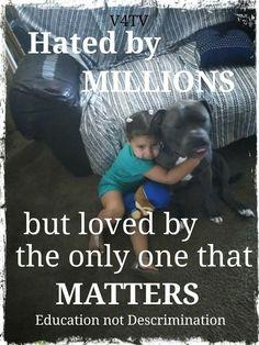 Pitbull Facts, Pitbulls, Hate, Education, Pit Bulls, Pitbull, Onderwijs, Learning, Pit Bull Terriers