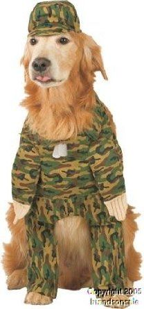 Amazon.com: Pet Army Dog Halloween Costume For Large Dogs: Clothing
