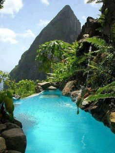 Infinity Pool, St. Lucia, The Caribbean.