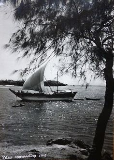 Dhow approaching Mombasa Port