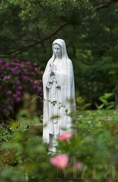 Merveilleux Blessed Mother Outdoor Statues | Rose Garden With Blessed Mother Statue.  Mary Flowers, Garden