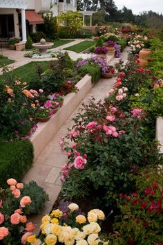 Beautiful Rose Garden Ideas A beautiful rose garden in a slope yard. I want my plants to be garden design Beautiful Rose Garden Ideas - savillefurniture Small Rose Garden Ideas, Small Flower Gardens, Rose Garden Design, Rose Design, Flower Gardening, Beautiful Flowers Garden, Beautiful Roses, Beautiful Gardens, Magical Gardens