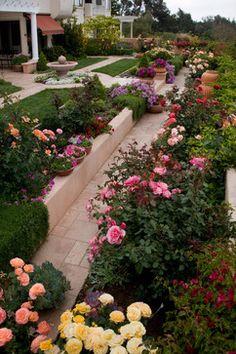 Outdoor Photos Rose Garden Design Ideas, Pictures, Remodel, and Decor